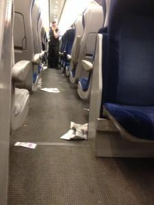 Train Litter 3